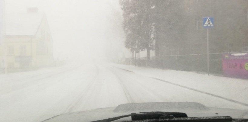 snow0119.jpg